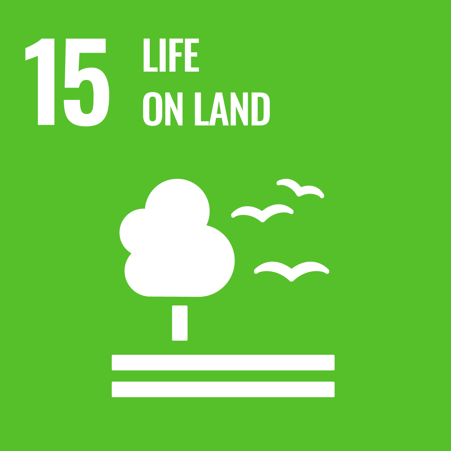 Protect, restore and promote sustainable use of terrestrial ecosystems, sustainably manage forests, combat desertification, and halt and reverse land degradation and halt biodiversity loss